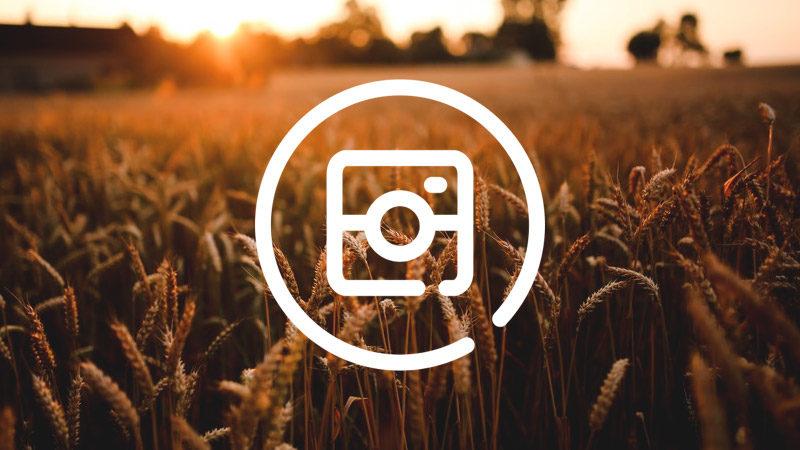 Mejores Apps para Instagram